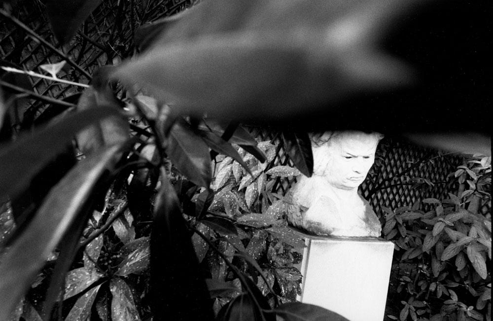Dans le jardin de la Maison de Balzac
