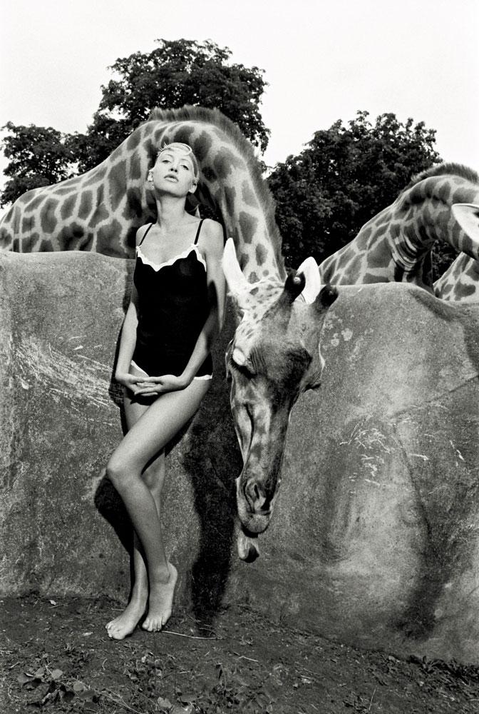 Série à Paris, mannequin avec girafes au zoo de Vincennes